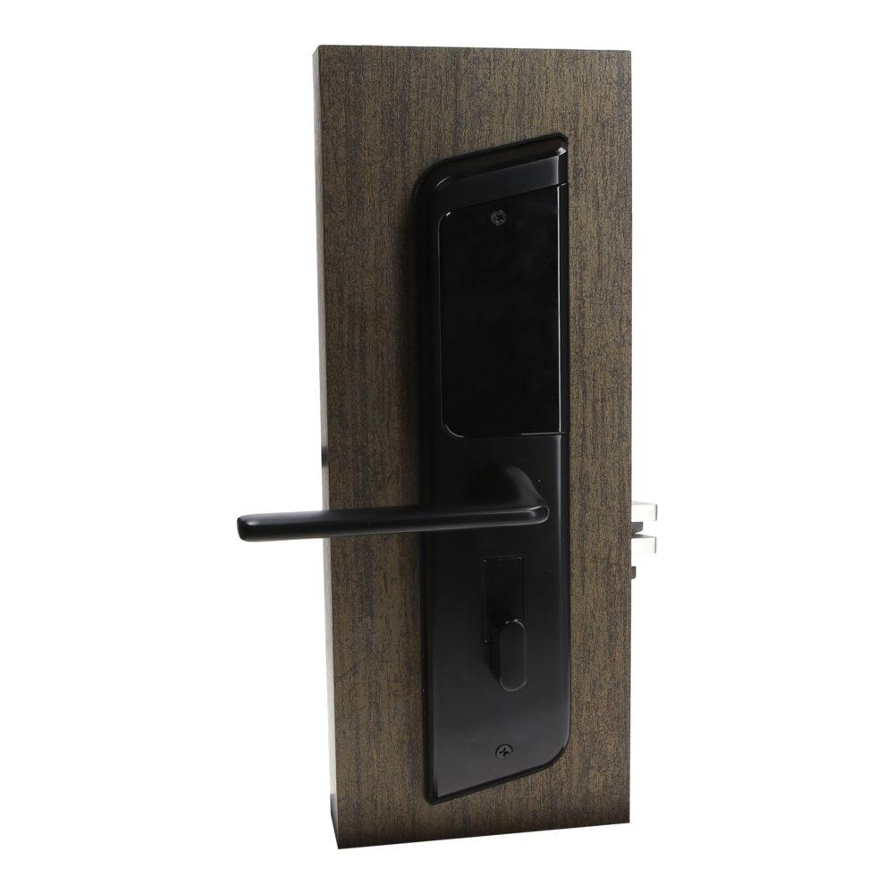 Electronic Door Locks